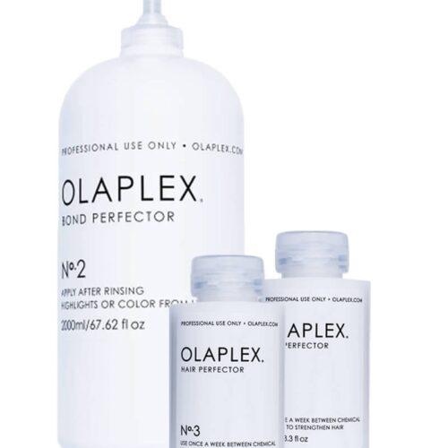 Olaplex No 2 Bond Perfector + 2x Take Home NO.3
